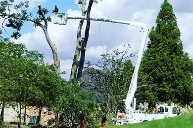 Blocker Tree & Landscape LLC - Bucket Truck Services